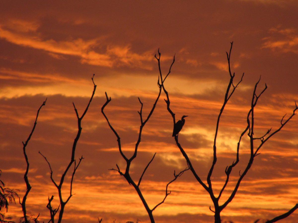 Travel to Sabah watching sunset