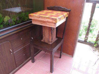 stingless bee hive in Borneo Eco-House